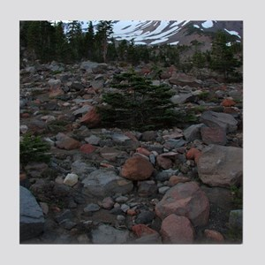 Mount Shasta 62 Tile Coaster