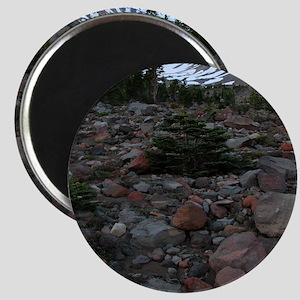 Mount Shasta 62 Magnet