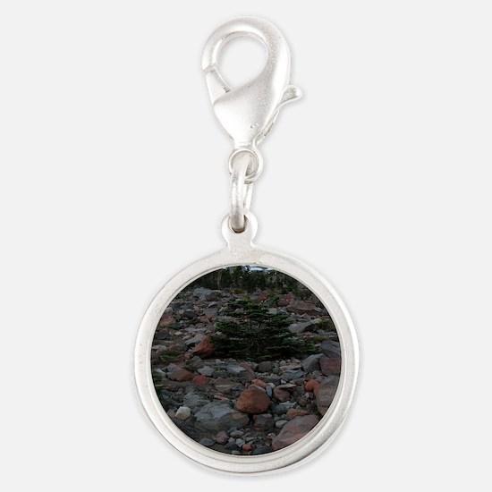 Mount Shasta 62 Silver Round Charm