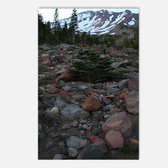 Mount Shasta 62 Postcards (Package of 8)