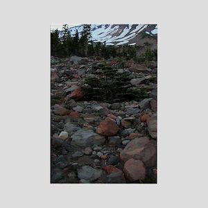 Mount Shasta 62 Rectangle Magnet