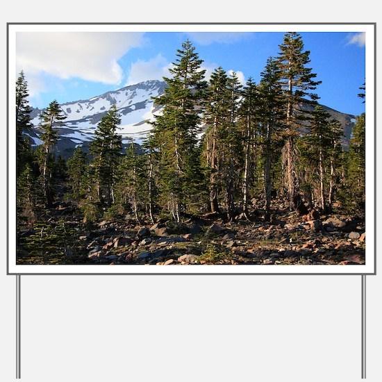 Mount Shasta 42 Yard Sign