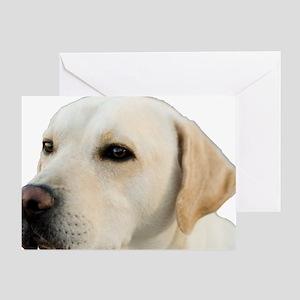 Yellow Lab Head Greeting Card