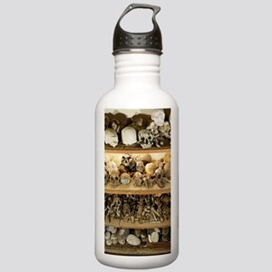 Hominid skull casts Stainless Water Bottle 1.0L