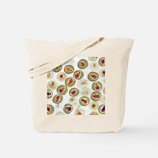 HIV particles, TEM Tote Bag