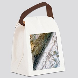 K/T boundary layer Canvas Lunch Bag