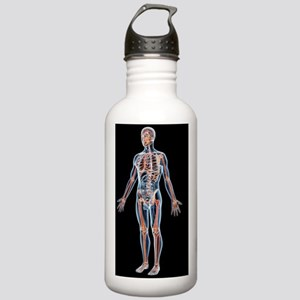 Human male anatomy, ar Stainless Water Bottle 1.0L