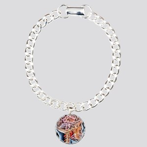 Internal brain anatomy,  Charm Bracelet, One Charm