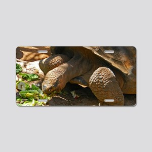Tortoise Aluminum License Plate