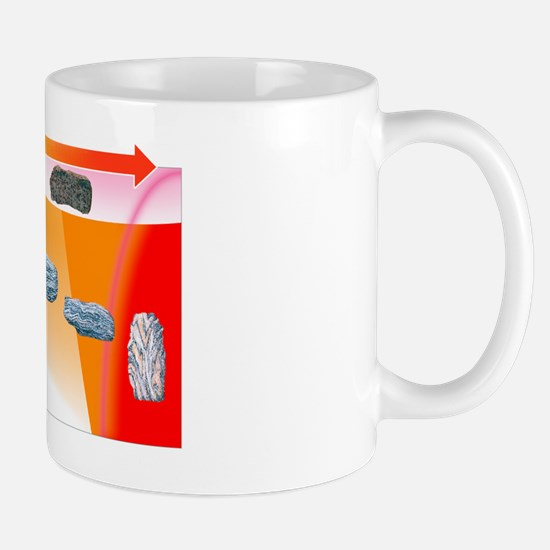 Metamorphic grades, illustration Mug