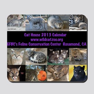 2013 Calendar Cover Mousepad