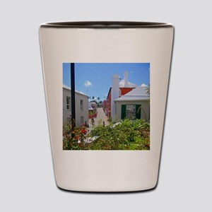 St George Shot Glass