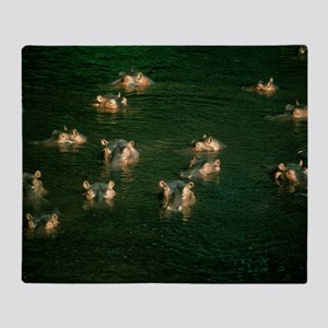 Hippopotamuses in water Throw Blanket