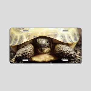 Horsfield tortoise Aluminum License Plate