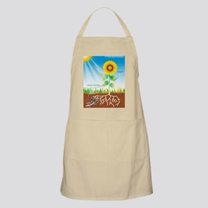 Photosynthesis, illustration Apron