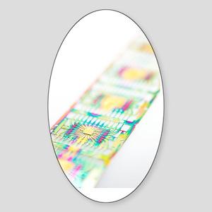 Microprocessor chips Sticker (Oval)