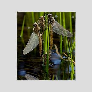 Newly-emerged dragonflies Throw Blanket