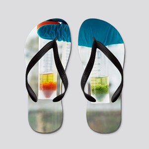 Pesticide residue analysis Flip Flops
