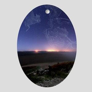 Night sky Oval Ornament