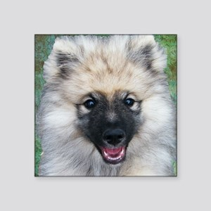 "Keeshond Puppy Square Sticker 3"" x 3"""