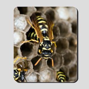 Paper Wasp Mousepad