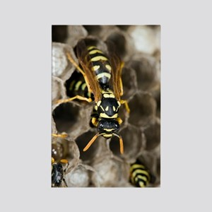 Paper Wasp Rectangle Magnet