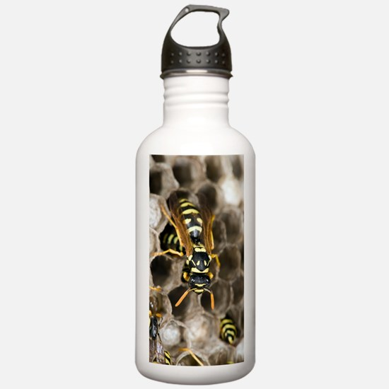 Paper Wasp Water Bottle