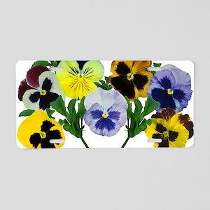 Pansy (Viola x wittrockiana Aluminum License Plate