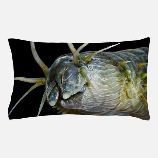 Ragworm head Pillow Case