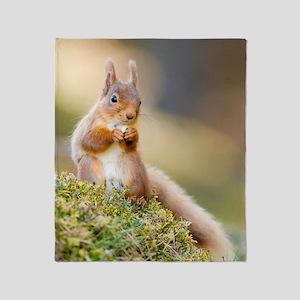 Red squirrel feeding Throw Blanket