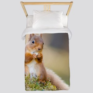Red squirrel feeding Twin Duvet