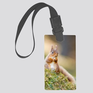 Red squirrel feeding Large Luggage Tag
