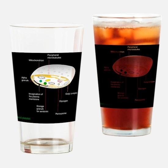 Platelet, artwork Drinking Glass