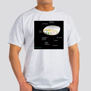 Platelet, artwork Light T-Shirt