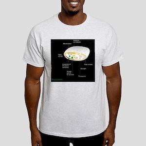 Platelet, artwork Light T-Shirt