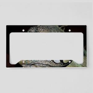Iguana License Plate Holder