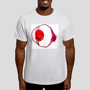 Rabbit eye, longitudinal section Light T-Shirt