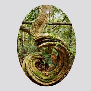 Rainforest undergrowth Oval Ornament