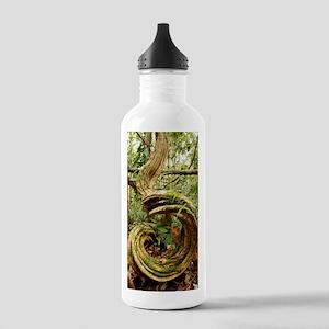 Rainforest undergrowth Stainless Water Bottle 1.0L