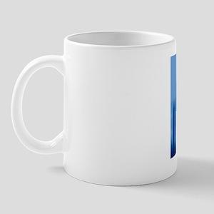 Identification Mug