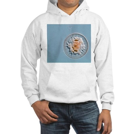 Shelled amoeba, light micrograph Hooded Sweatshirt