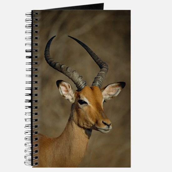 Impala Journal