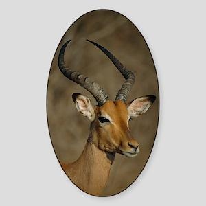 Impala Sticker (Oval)