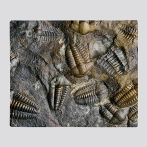 Trilobite fossils Throw Blanket