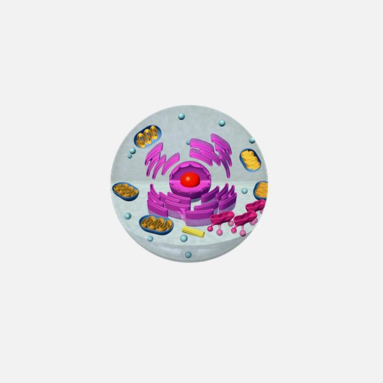 Animal cell structure, computer artwor Mini Button