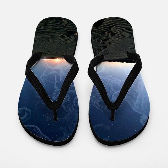 Summer night sky Flip Flops