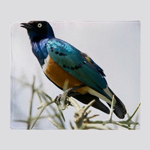 Superb starling Throw Blanket