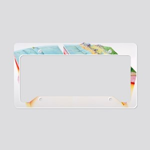 Subduction License Plate Holder