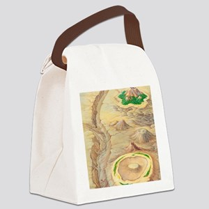 Types of islands Canvas Lunch Bag