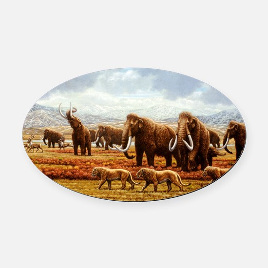 Woolly mammoths Oval Car Magnet
